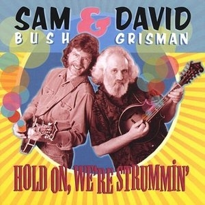 Hold On We're Strummin' album cover