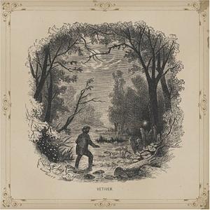 Vetiver album cover