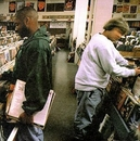 Endtroducing... album cover