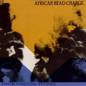 Environmental Studies album cover