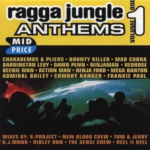 Ragga Jungle Anthems Vol.1 album cover