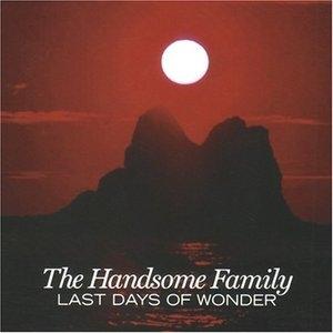 Last Days Of Wonder album cover