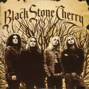 Black Stone Cherry album cover