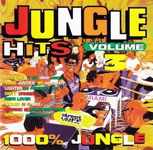 Jungle Hits Volume 3 album cover