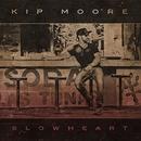 Slowheart album cover