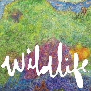 Wildlife album cover