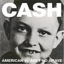 American VI: Ain't No Gra... album cover