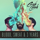 Blood, Sweat & 3 Years album cover