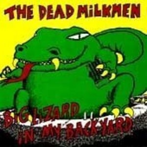 Big Lizard In My Backyard album cover