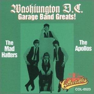 Washington DC Garage Band Greats album cover