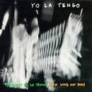 President Yo La Tengo-New... album cover