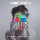 Walk Between Worlds (Delu... album cover