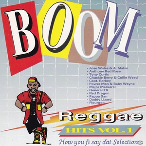 Boom Reggae Hits, Vol. 1: How You Fi Say Dat Selection album cover