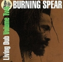 Living Dub Vol.2 album cover