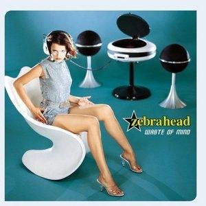 Waste Of Mind album cover