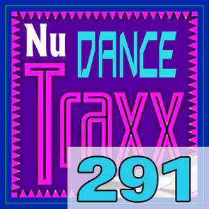 ERG Music: Nu Dance Traxx, Vol. 291 (February 2019) album cover
