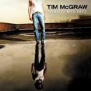 Greatest Hits Vol.2 (Curb... album cover