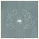 Vestiges & Claws album cover