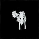 Kveikur album cover