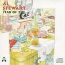 Year Of The Cat album cover
