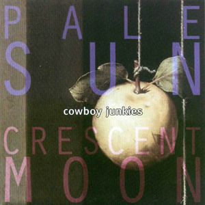 Pale Sun, Crescent Moon album cover