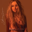 EVOLution  album cover