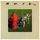 Signals album cover