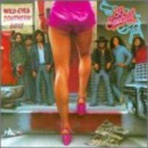 Wild-Eyed Southern Boys album cover