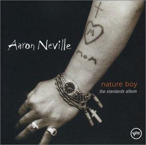 Nature Boy: The Standards Album album cover