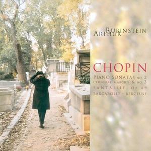 Rubinstein Collection, Vol.46 album cover