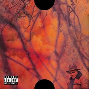 Blank Face LP album cover