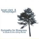 Sympathy For Bluegrass: A... album cover