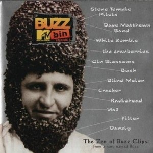 MTV Buzz Bin Vol.1 album cover