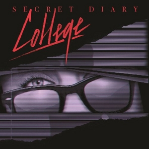 Secret Diary album cover