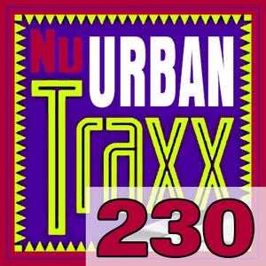 ERG Music: Nu Urban Traxx, Vol. 230 (Nov... album cover