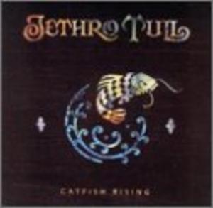 Catfish Rising album cover