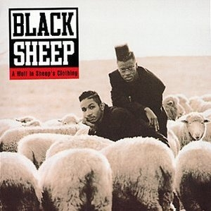 A Wolf In Sheep's Clothing album cover