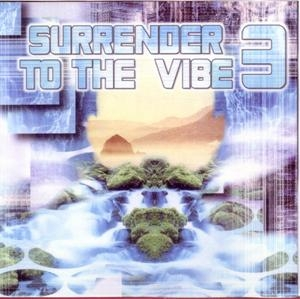 Surrender To The Vibe 3 album cover