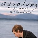 Strange & Beautiful album cover