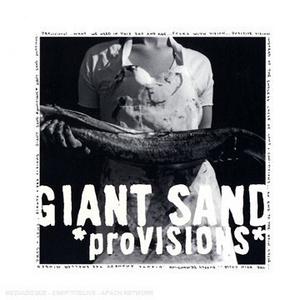 ProVISIONS album cover