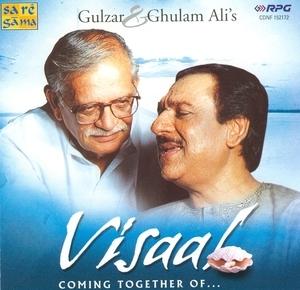 Visaal album cover