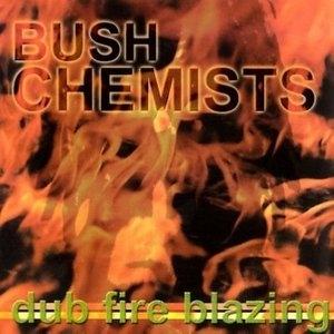 Dub Fire Blazing album cover