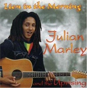 Lion In The Morning album cover