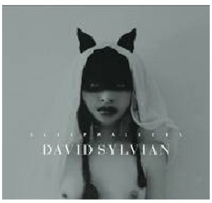 Sleepwalkers album cover