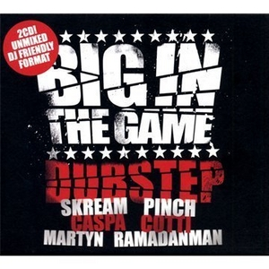 Big In The Game: Dubstep album cover