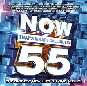 Now That's What I Call Music 55 album cover