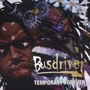 Temporary Forever album cover