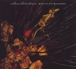 Song Of The Blackbird album cover