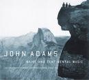 Adams: Naive And Sentimen... album cover