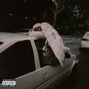 Negro Swan album cover